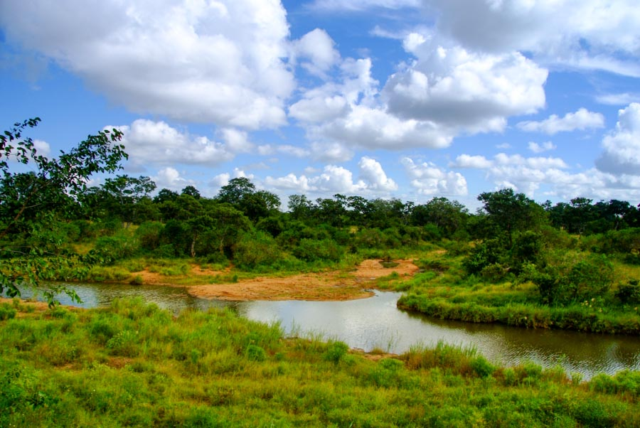 African River